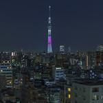 Tokyo 4425 thumbnail