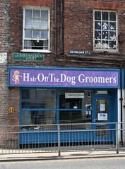Barbers Pun for Puppies? (Canis Major) Tags: hairoffthedog groomers pun newbury berkshire