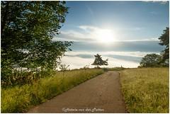 sized_HP20180607-065307 (Hetwie) Tags: montdenise ochtend outdoor natuur mist nature polignac bergen landschap sunset landscape zonsopkomst hauteloire frankrijk fr