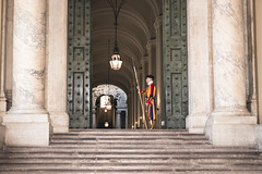 Pontifical Swiss Guard (austinfloyd) Tags: pontifical swiss guard vatican city holy see pope rome roma catholic church st peters saint basilica square religious papal papacy