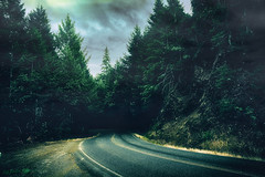 HAZY EVERGREEN HIGHWAY STORM-HDR-ROGUE-RIVER-ROAD-700WX467H-2018-IMG_0243_1-as-Smart-Object-1-copy.jpg © Cody Jacobson-ZEN MOUNTAIN MEDIA all rights reserved (codyjacobson@zenmountainmedia.com) Tags: hazy evergreen highway stormhdrrogueriverroad700wx467h2018img02431assmartobject1copyjpg zen mountain logo aurorahdr photohsop camera raw portfolio landscape photography digital blending rogue river jerrys flat road oregon canon t6i edited siskiyourogue national forest retouching backcountry clouuds overcast sky haze fog cinematic hdr dark shadows contrast scurve switchback winding travel tourism summer spruce trees mountains rocks pacific northwest southwestern exploringtheartofimagination zenmountainmediacom picoftheday 2018