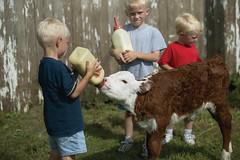 4D7U9597 (Iowa Farm Bureau) Tags: osborn barr marketing