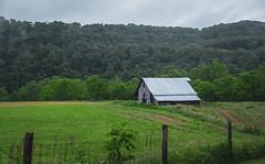 Greenville Barn_Art (Bob G. Bell) Tags: barn farm greenville wv bobbell fence