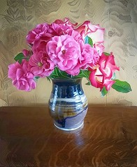 Roses from my mother's garden (GeminEye27) Tags: dreamscope pixelbenderoilpaint topazclean