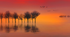 Solitude-545 (Wim Koopman) Tags: digital art landscape water surface reflection ripples silhouette sunrise serene surreal
