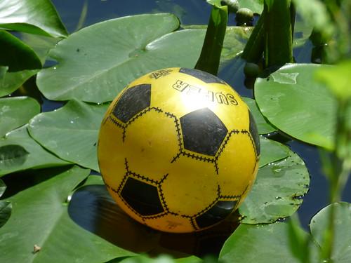 The Great Pool at Baddesley Clinton - football