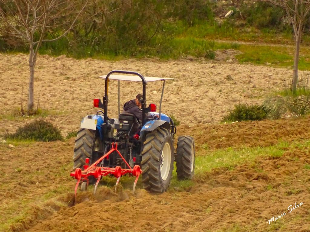 Águas Frias (Chaves) - ... lavrando,cuidadosamente,  a terra, preparando-a para a sementeira ...