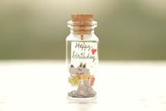 Happy birthday,Tiny message in a bottle,Miniatures,Personalised Gift,Funny Love Card,Valentine Card,Gift for her/him,Girlfriend gift, funny card, message card and miniatures card ideas (charles fukuyama) Tags: handmadecard illustration cuteanimals unique partygift glitter holiday card lovecard tiny bottle homedecor deskdecoration kikuike custommade