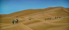 Crossing the desert (maios) Tags: sahara crossingthedesert crossing desert nikon d7100 nikond7100 sand sky blue caravan camel merzouga morocco sanddunes dunes
