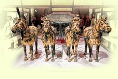 Terracotta Horses (SteveJ442) Tags: liverpool merseyside england uk worldmuseum museum exhibition terracottaarmy terracottawarriors china history historic historical nikon