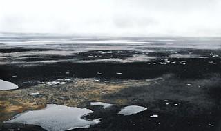 Arctic Alaska in the summer