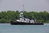 TUG EVANS McKEIL 060718 (mile27) Tags: algoway algomacentral tug tugboat evansmckeil