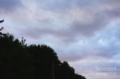 Water color clouds (Aliceheartphoto) Tags: fineartamericaartist photography fineartamerica faa fineart pixelsartist sky clouds trees naturephotography nature watercolor purple bluesky sony cybershot