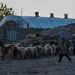 Meymand, Kerman Province, Iran