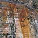 Bleeding unconformity (Chattanooga Shale over Cumberland Formation; Burkesville West Rt. 90 roadcut, Kentucky, USA) 9