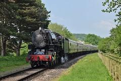 5197 at Gotherington. 26/5/18 (Nick Wilcock) Tags: usatc 280 5197 steam gloucestershirewarwickshirerailway festivalofsteam railways gotherington