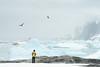 Antarctica Dream (Korzhonov Daniil) Tags: winner antarctica tall ship penguin penguins animals nikon gitzo lucroit iceberg