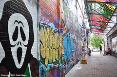 Graffiti Alley (Trish Mayo) Tags: paintedwalls modicaway skull mural