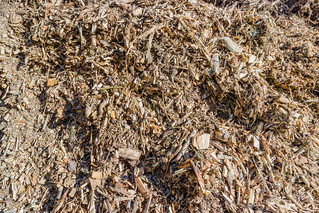 Biomass from agricultural and wood waste