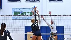 Miss. College 090217 143 (REBlue) Tags: universityofillinoisspringfield uis missssippicollege volleyball glvc trac