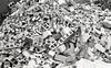 A Sad Pile of Bricks (tyson_laidler) Tags: acros 100 fujifilm black white monochrome