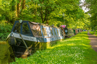 A Stress Free Walk Up The Staffordshire & Worcestershire Canal