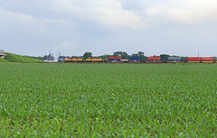 G3 Switchers (GLC 392) Tags: 1822 1919 up union pacific railroad railway train global 3 rochelle il illinois container emd sd40n yard farm field corn crops