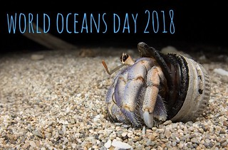 World Oceans Day 2018, Okinawa-Japan