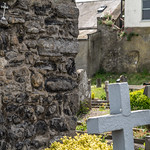 ST. MARY'S CHURCH AND GRAVEYARD [HOWTH OLD ABBEY]-141083 thumbnail
