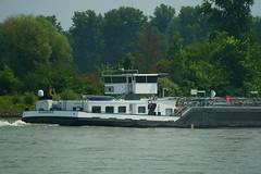 TMS BODENSEE (Lutz Blohm) Tags: tmsbodensee tankschiff rhein rheinschifffahrt binnenschifffahrt binnenschiffe rheinkilometer409 sonyfe70300goss sonyalpha7aiii
