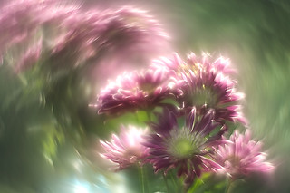 Bright vortex