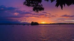 Just one more Sunset (alain_did) Tags: sunset sun amazonie amazonia amériquedusud amazonian guyanefrancaise saintlaurentdumaroni lemaroni fleuve lumière lueurs ombres relief barques reflets tourisme découverte evasion voyage