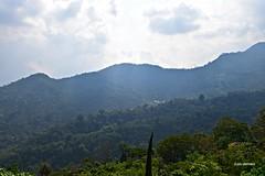 Faldas del Volcán de Tacaná,Chiapas...DSC_2894P (gtercero) Tags: 20170417jch uniónjuárez chiapas jch gtercero