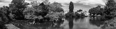 Bletchley Park (Bukshee) Tags: tree monochrome landscape water nature lake river infrared fog park leaf blackandwhite outdoors pond plant grass horizontal panoramic gray nopeople reedgrassfamily oaktree oakwood nonurbanscene day