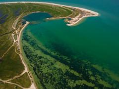 cDJI_1075 (Roman NMSK) Tags: brd berdansk бердянск море азовское azov sea