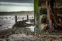 Slippery When Wet (darrenball189) Tags: slippery beach sea wet landscape stone steps rock tide outdoors traditional shore flowing pebble step sky ocean coast black dramatic seascape wave surf splashing stairway surface texture seaweed breakers tidalwall handrail sandsend