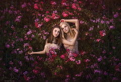 Intertwined ({jessica drossin}) Tags: jessicadrossin women flowers bloom wwwjessicadrossincom friends ivy leaves dresses surreal fine art girls colorful lush green garden portrait flower detailed