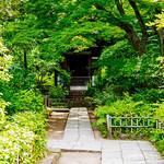 Kannondo of Obaiin in Engakuji Temple, Kamakura : 北鎌倉・円覚寺 黄梅院観音堂 thumbnail