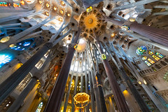 La Sagrada Nave (fate atc) Tags: antonigaudi barcelona basilica catalonia catholic expiatori familia sagrada spain bones cathedral ceiling church columns dela helicoidal holyfamily hyperboloid lighting modernism nave roof