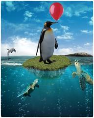 ocean confusione (Swissrock-II) Tags: challenge photoshop lightroom water ocean penguin waterturtle balloon june 2018 clouds photomanipulation photoshopart