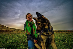 love got to do with that (tchia sheffer) Tags: red dog germanshepherd animal