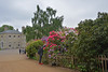 Kenwood (Caulker) Tags: mansion rhododendron birchtree hampsteadheath