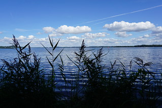 Spaziergang am Schweriner See