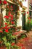 romantic (kelsk) Tags: delft rosesarered rozen roos flowers bloemen bank bench langsdegracht along canal buitenwatersloot kelskphotography zuidholland holland nederland netherlands