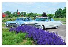 Cadillac Coupe de Ville - 1959 and 1960 (sjb4photos) Tags: 2018grandexperience 1959cadillaccoupedeville 1960cadillaccoupedeville lavender