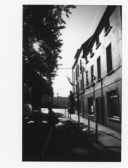 sunny morning (Scenes from the life of a double monster) Tags: film fuji ireland instax mediumformat instant