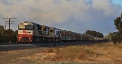 SCT009 LDP005 and CSR001 roll PM9 past the 325km post in Horsham (bukk05) Tags: sct009 railpage:class=97 railpage:loco=sct009 rpausctclass rpausctclasssct009 ldp005 csr001 sct sctlogistics sctclass ldpclass csrclass csrziyangsda1 mtu20v4000r43lefi gt46cace emd16710g3ces pm9 specialisedcontainertransport wimmera westernstandardgaugeline wagons explore export engine emd electromotivediesel railway railroad railpage rp3 rail railwaystation railwaystations ruralcityofhorsham train tracks tamron tamron16300 trains photograph photo loco locomotive hp horsham horsepower flickr freight diesel station standardgauge sg australia artc canon60d canon victoria vr victorianrailway vline victorianrailways 2018 autumn mainline