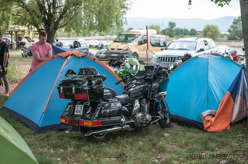 "Rolling Wheels Bike Week 2018 (209) • <a style=""font-size:0.8em;"" href=""http://www.flickr.com/photos/156470846@N06/42724347622/"" target=""_blank"">View on Flickr</a>"