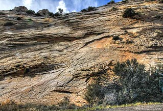 Slickrock near Scenic Highway 12, Escalante Canyon