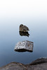 Duck tale (Juho Mäkinen) Tags: duck d7100 night finland calm lake national park nature water sleeping bird sigma